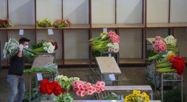 İngiltere'deki Anneler Günü ve Dünya Kadınlar Günü, çiçeğe ilgiyi katladı