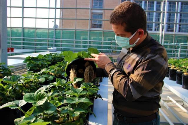 Türkiye, bu uygulamalarla tarımda devrime hazırlanıyor